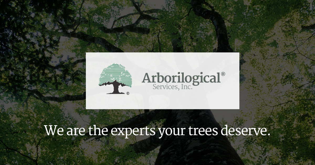 Recommended Trees For North Central Texas Arborilogical